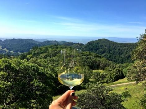 Mayacamas- wine photo